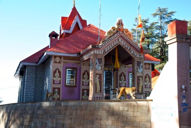Monkey Temple Shimla