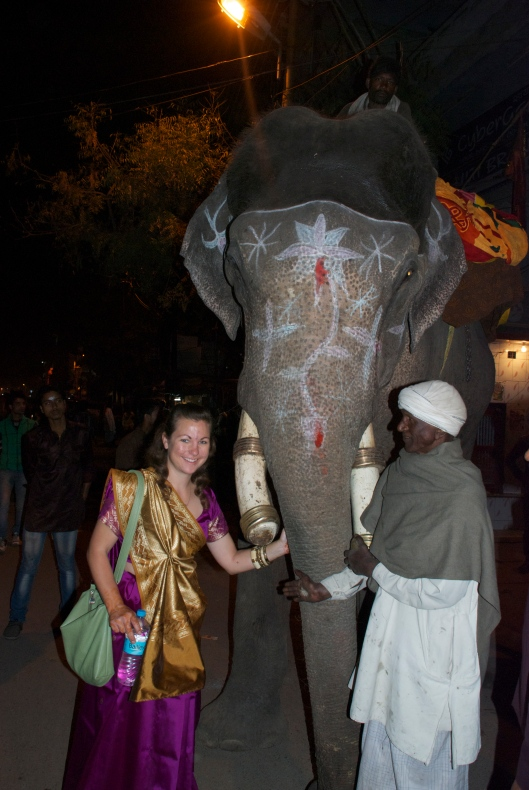 Indian Wedding Elephant